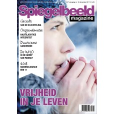 Spiegelbeeld, december 2017